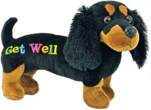 Get Well Plush Dachshund Dog