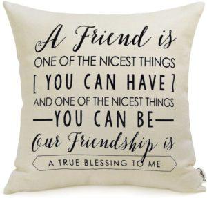 Friendship Throw Pillow Cover