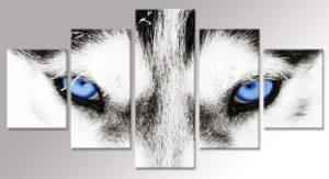 Husky Dog Artwork