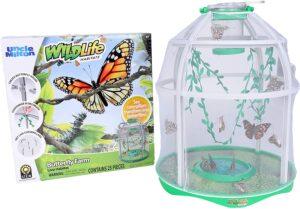 Butterfly Farm Live Habitat