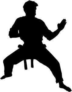 Martial Arts Wall Sticker