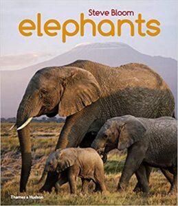 Children Elephant Book Gift