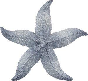 Starfish Wall Decoration