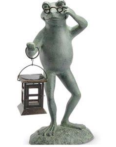 Professor Frog With Lantern